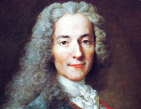 what does voltaire mean