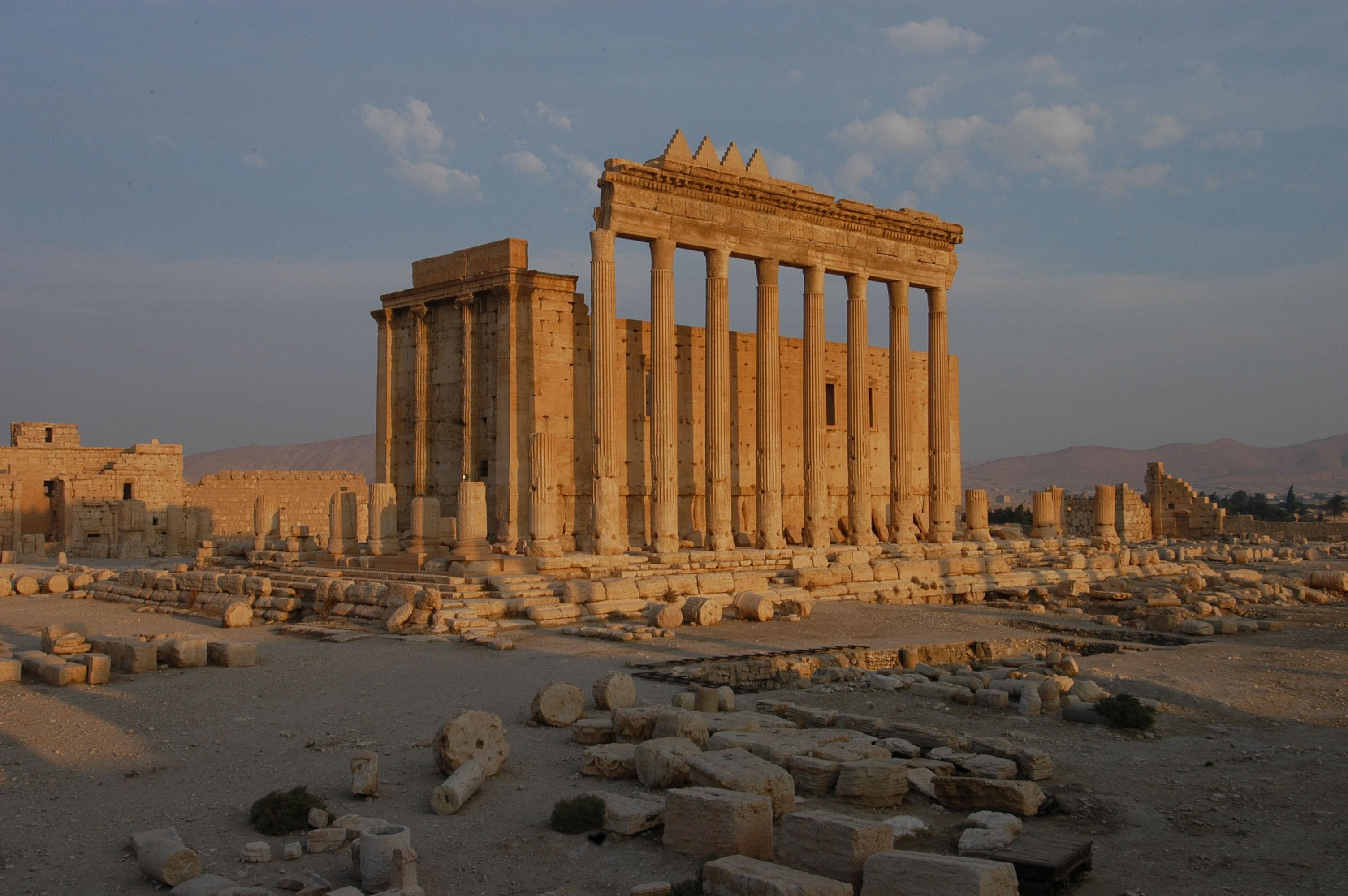 Cover for: Wir tun da gar nichts! Über die Geschichte, die Zerstörung und den Wiederaufbau von Palmyra