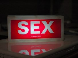 Cover for: Sex work is work. That's the problem… and the key