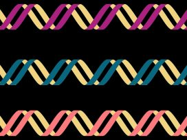 DNA left handed double helix
